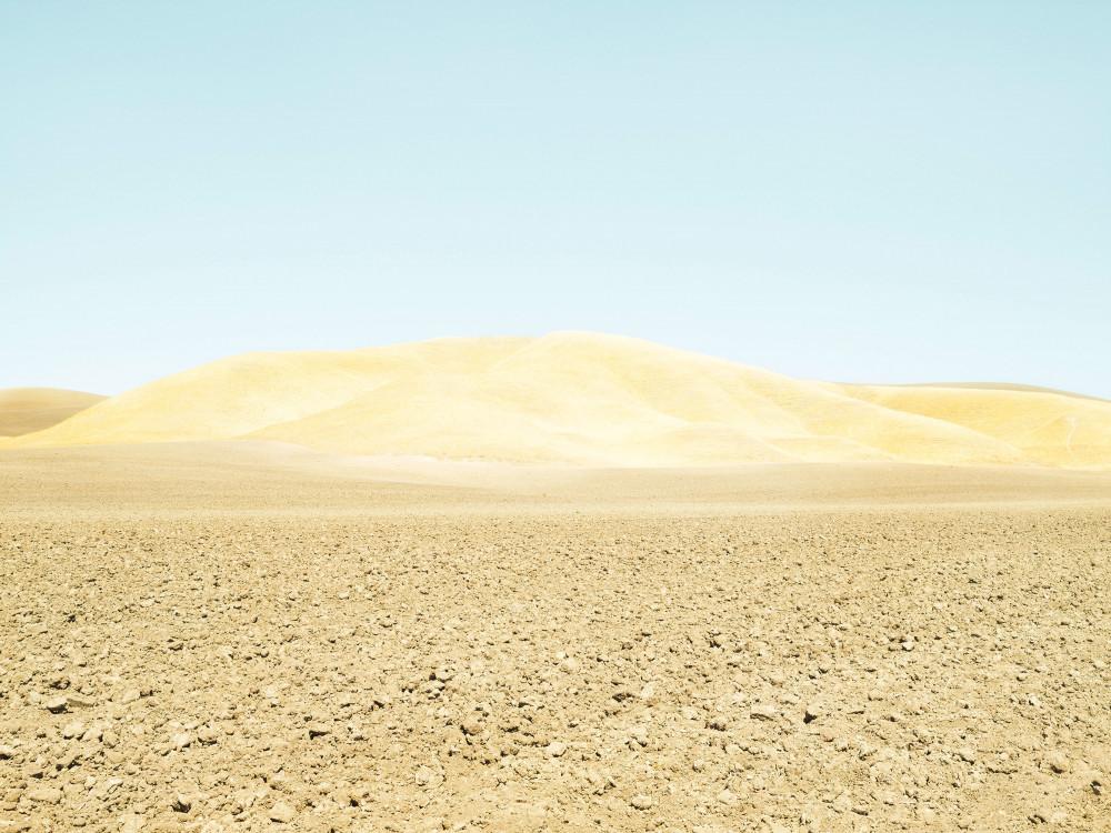Fallow field, Paso Robles, USA