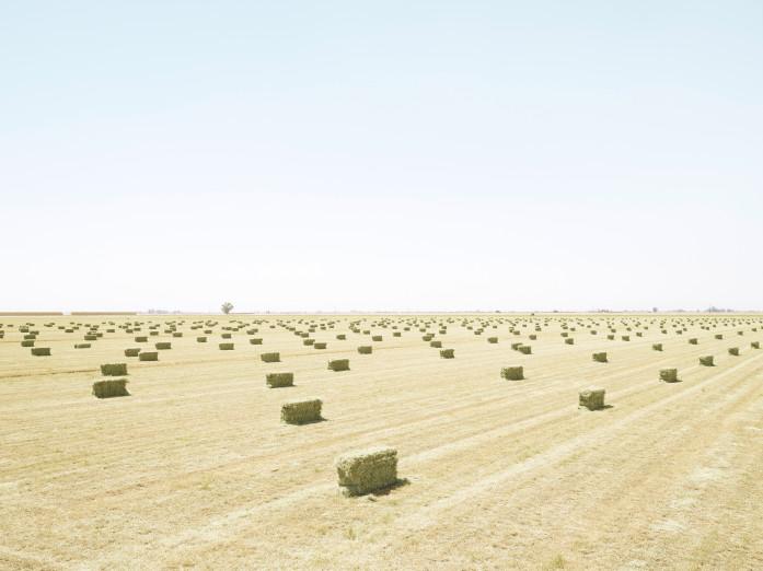 Hay bales in the grasslands along the Mexico-California border
