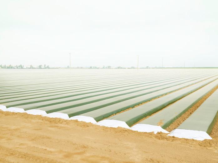 Preparing the soil near Santa Maria, USA