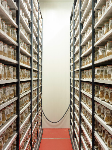 Cold chamber for archiving seeds, German research institute