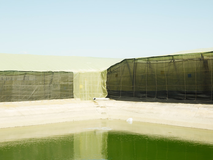 Reservoir for greenhouse irrigation, Andalusia