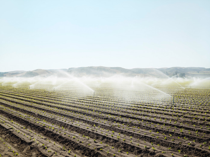 Dauerbewässerung bei Santa Maria, USA